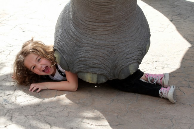 Picture of a small girl under an elephant's foot