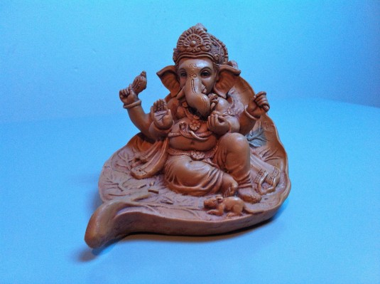 home yoga practice book.ganesh1