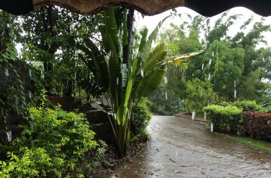 Monsoon beauty at Kare